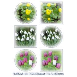 JOY CUT/EMB - Sketch Art Flowers - 6002/1035