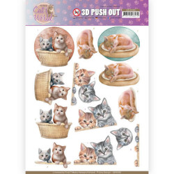 Pushout - Amy Design - Cats...