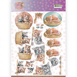 Amy Design - Cats World -...