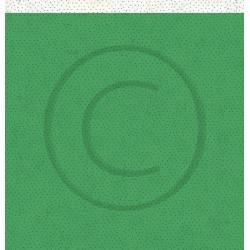First Edition - Foil - Red (FEFOL005)