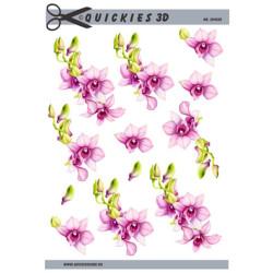 Quickies 3D - 204528