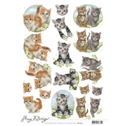 Amy Design - Cats - CD11457