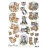Amy Design - Cats - CD11457