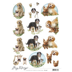 Amy Design - Dogs - CD11458