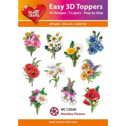 Easy 3D Toppers - Meadow...