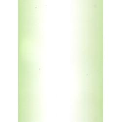 Skyggekarton - A4 - Lys Grøn