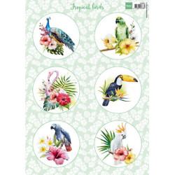 Marianne Design - Tropical...