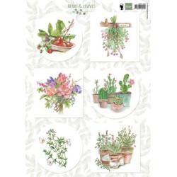 Marianne Design - Herbs &...
